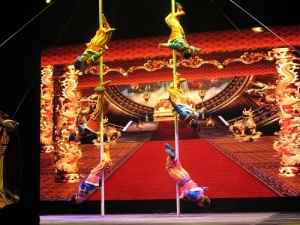 Image owned by author: Acrobat live show