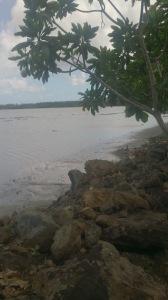 Poutasi beach